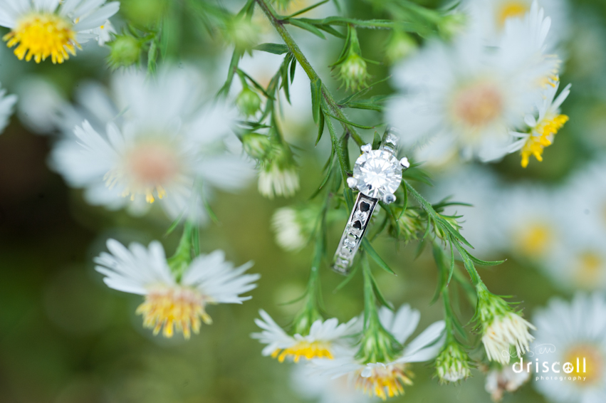 engagment-ring-photos-kristen-driscoll-photography-20120921-5871